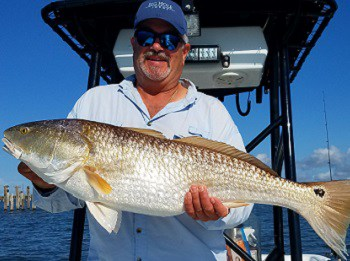Fishing charters grand isle louisiana inshore and for Fishing charters grand isle la